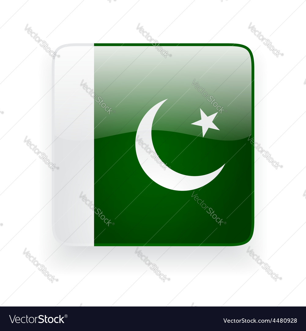 Square icon with flag of pakistan vector | Price: 1 Credit (USD $1)