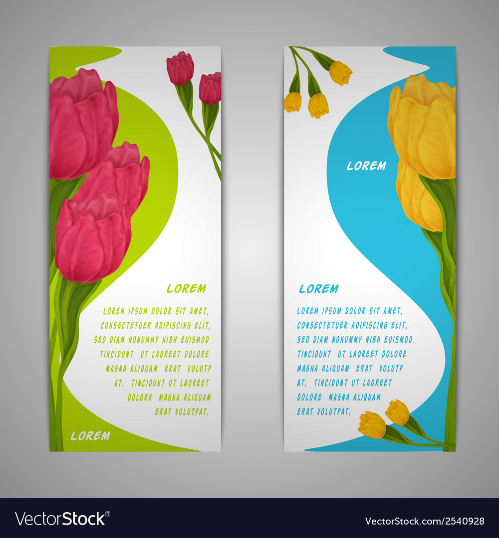 Tulip flowers banners vector | Price: 1 Credit (USD $1)