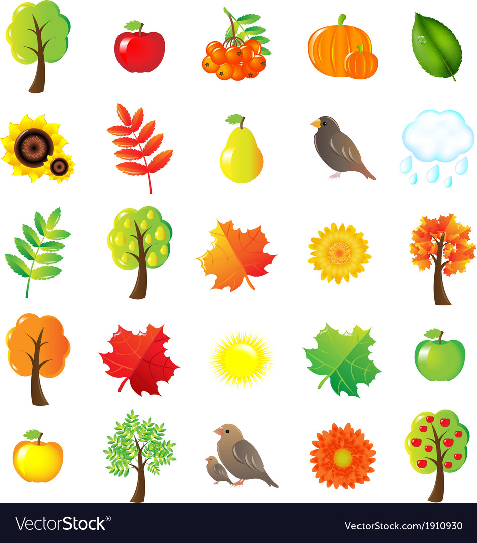 Autumn symbols and elements vector | Price: 1 Credit (USD $1)