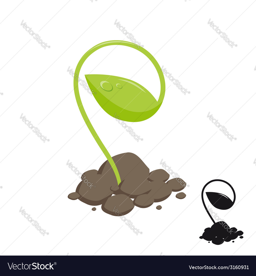 Young shoot of plants growing in the soil vector