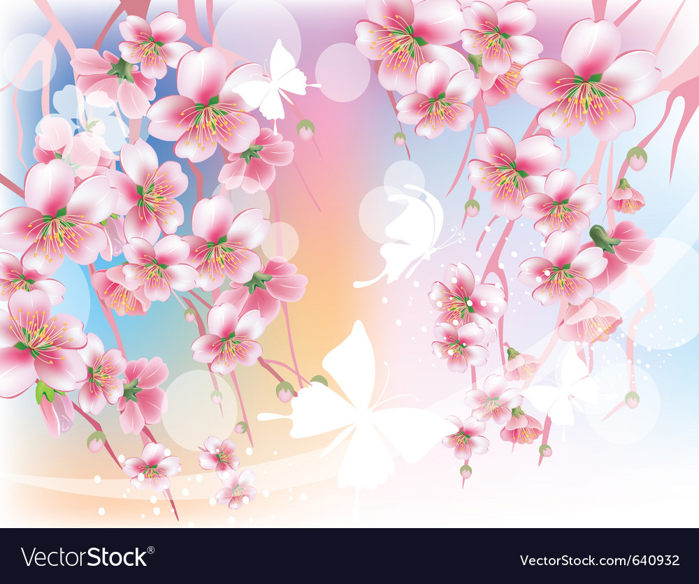 Blooming branches against the sky vector   Price: 1 Credit (USD $1)