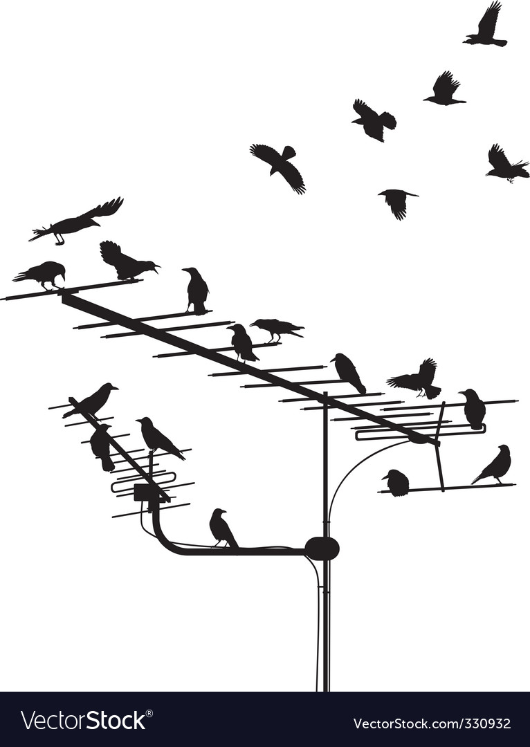Crows on the antenna vector | Price: 1 Credit (USD $1)