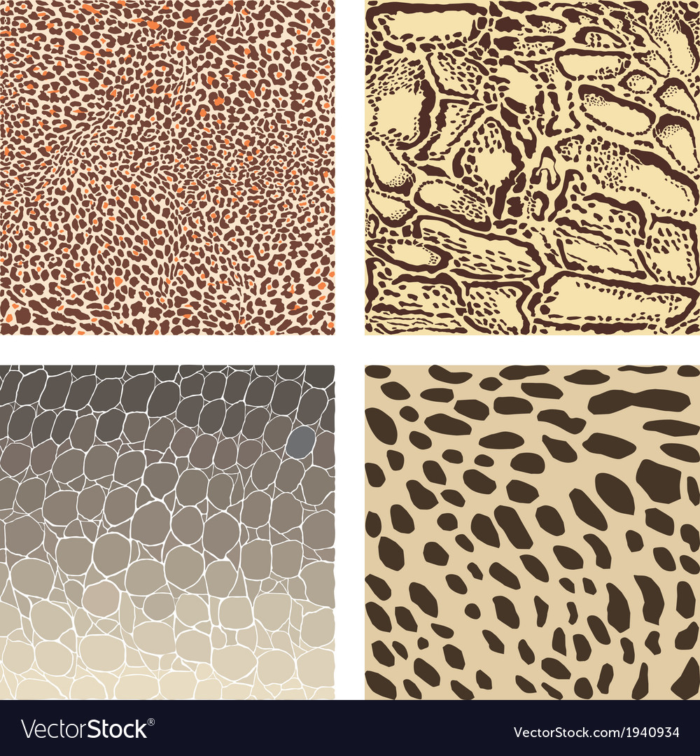 Animal color background vector | Price: 1 Credit (USD $1)