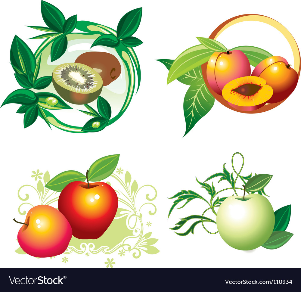 Fruit designs vector | Price: 1 Credit (USD $1)