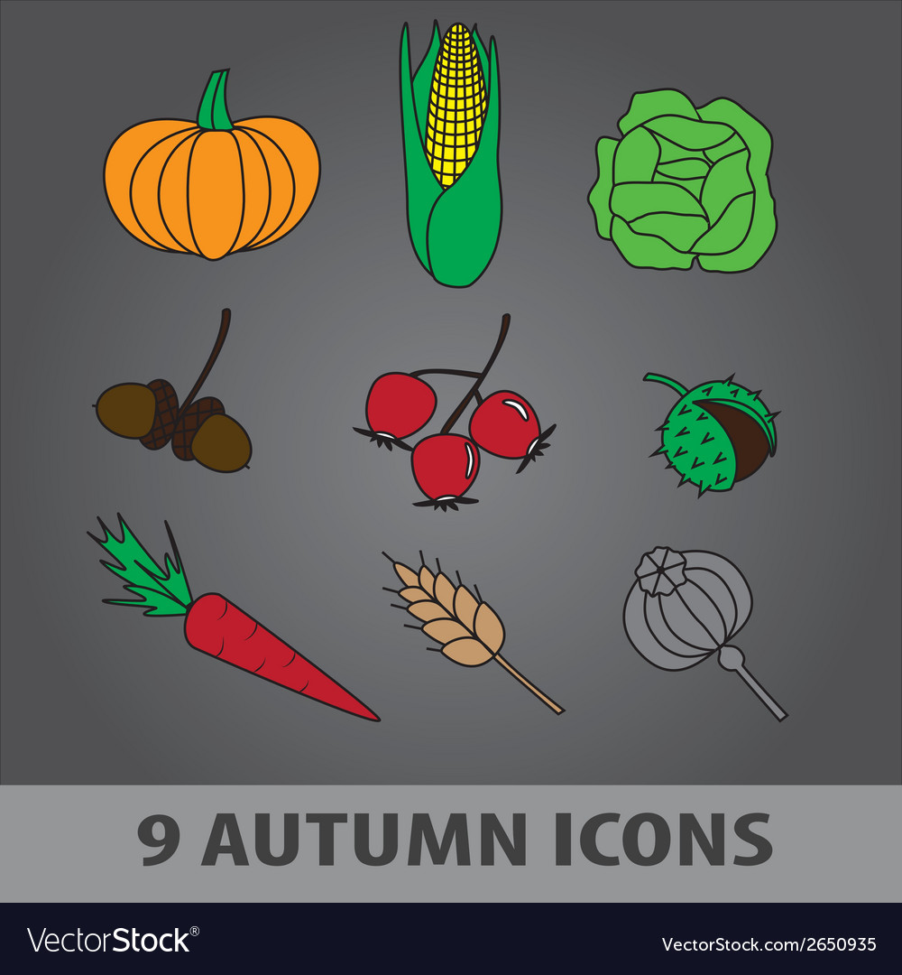 Autumn fruit icons eps10 vector | Price: 1 Credit (USD $1)