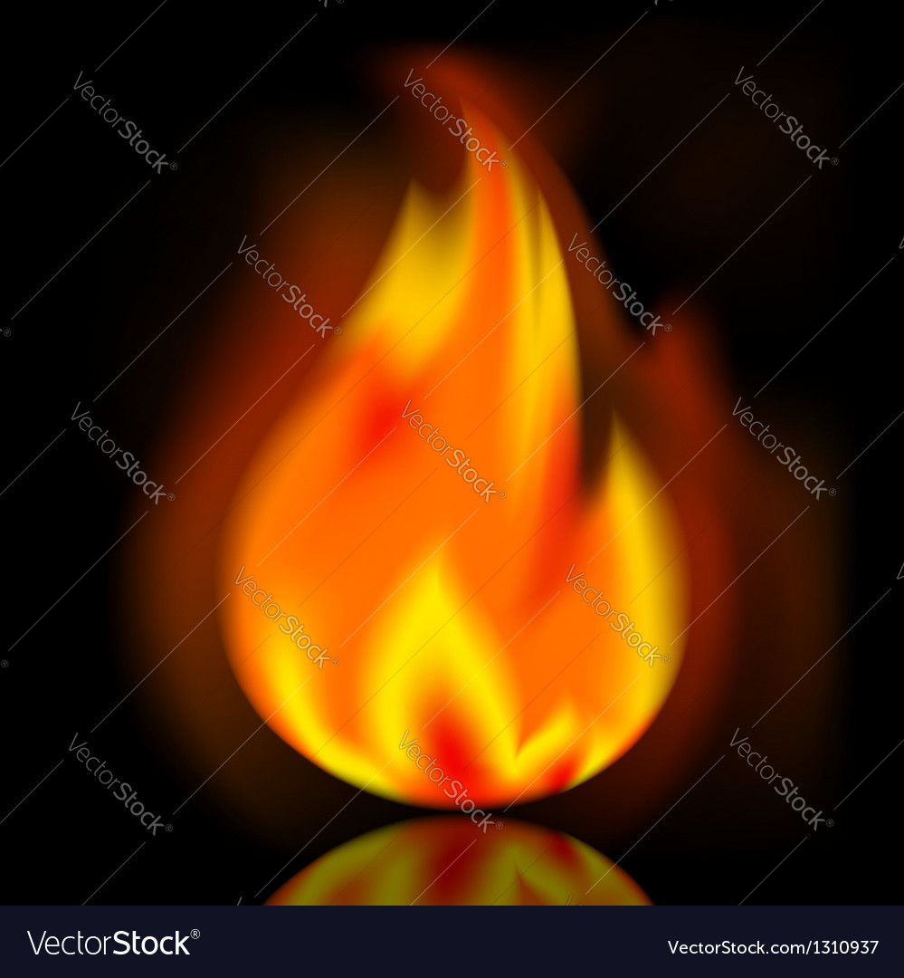 Fire bright flame on black background vector | Price: 1 Credit (USD $1)
