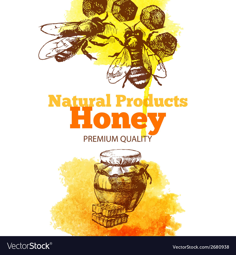 Honey background with hand drawn sketch vector | Price: 1 Credit (USD $1)