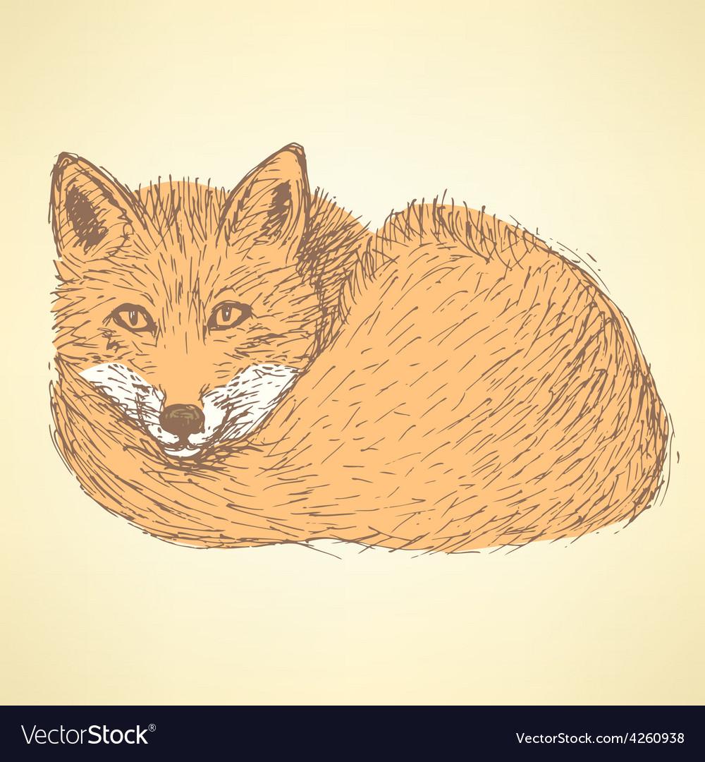 Sketch cute fox in vintage style vector | Price: 1 Credit (USD $1)