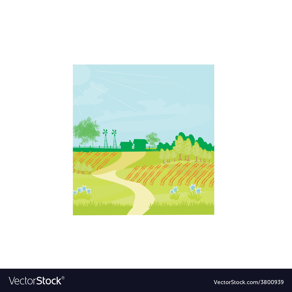 Eco farming - landscapes vector | Price: 1 Credit (USD $1)