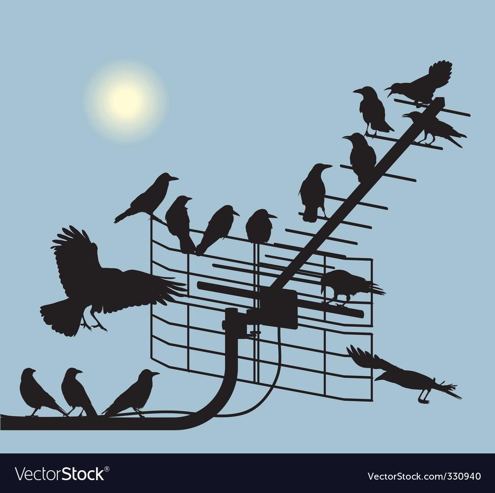 Debate crows vector | Price: 1 Credit (USD $1)