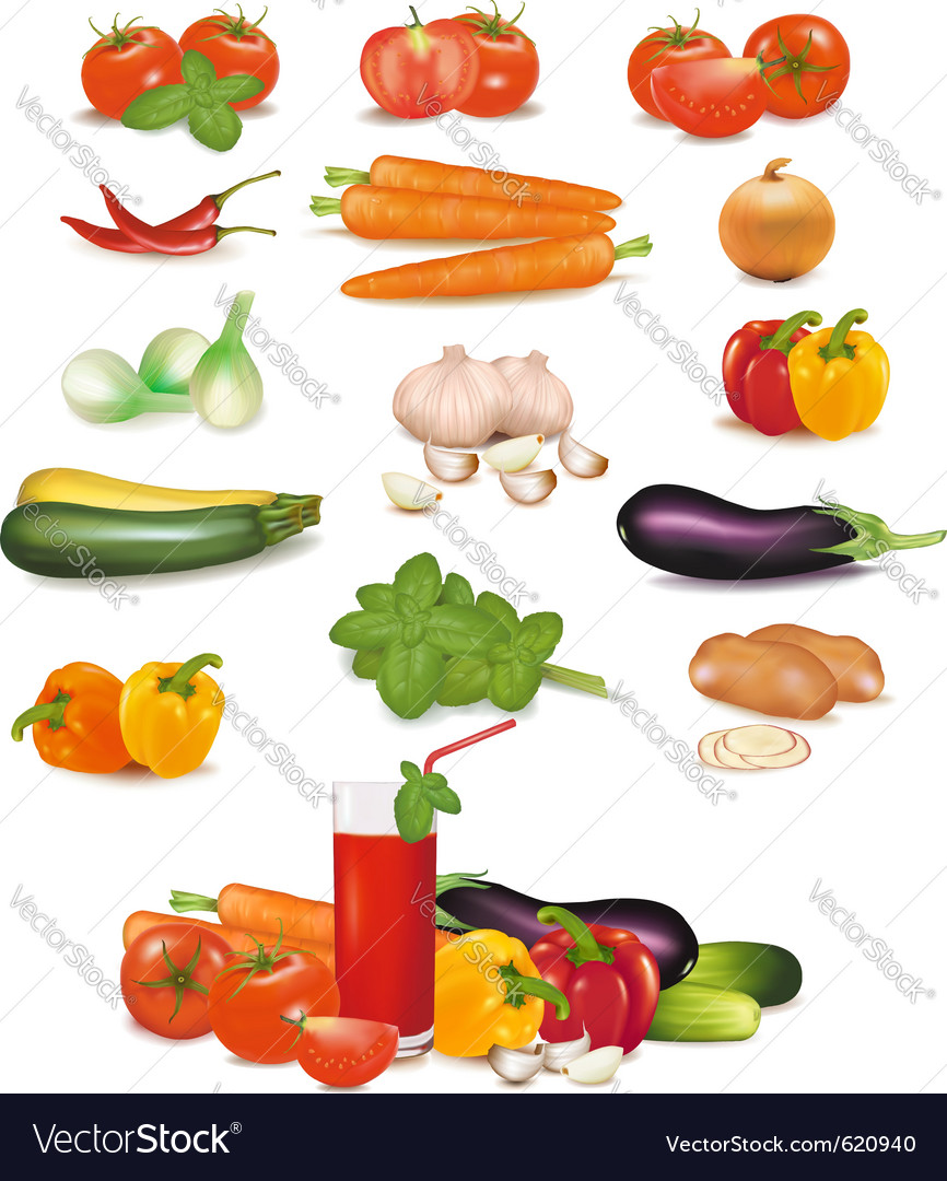 Vegetables vector | Price: 3 Credit (USD $3)
