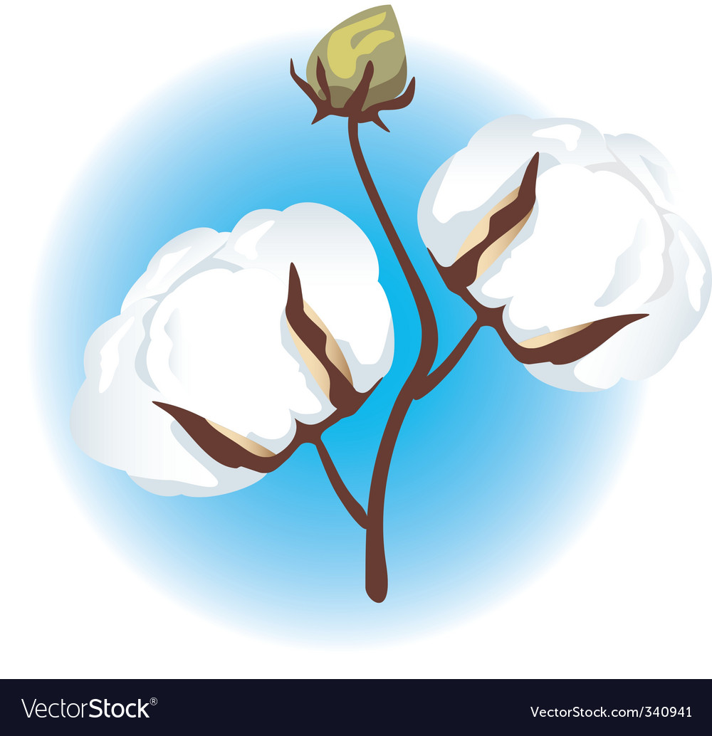 Cotton branch vector | Price: 1 Credit (USD $1)