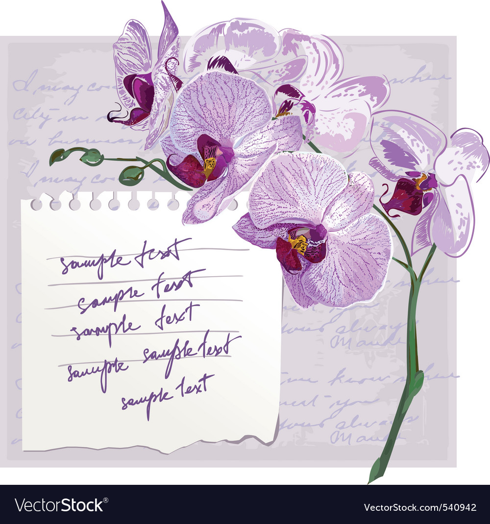 Card with flower orchid vector | Price: 3 Credit (USD $3)