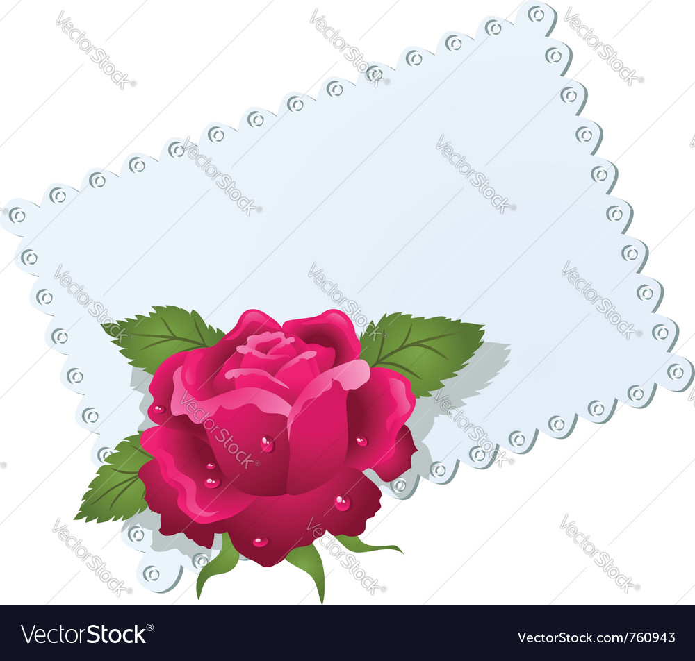 Lace napkin and rose vector | Price: 1 Credit (USD $1)