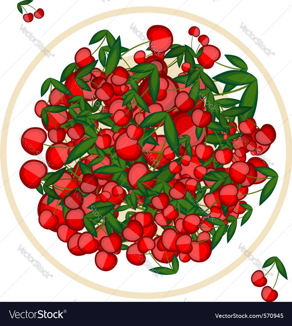 Cherries vector | Price: 1 Credit (USD $1)