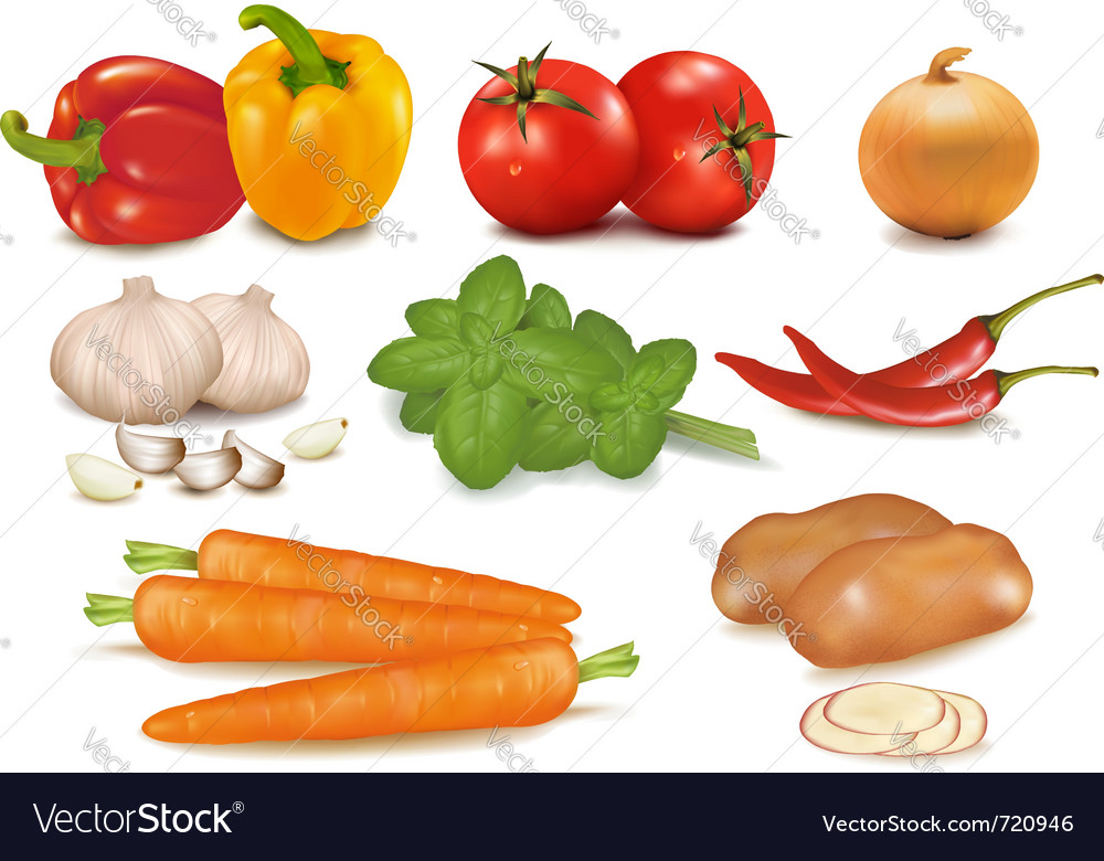 Big colorful group of vegetables vector | Price: 3 Credit (USD $3)