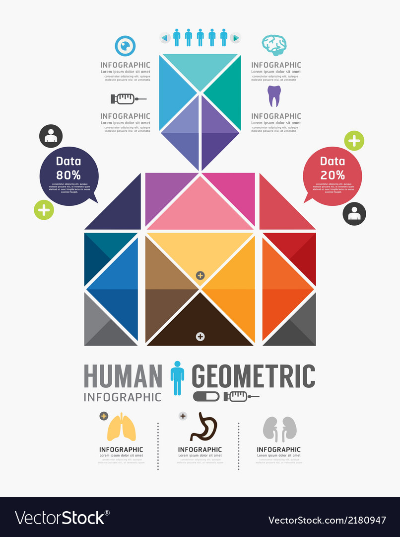 Infographic human geometric design vector | Price: 1 Credit (USD $1)