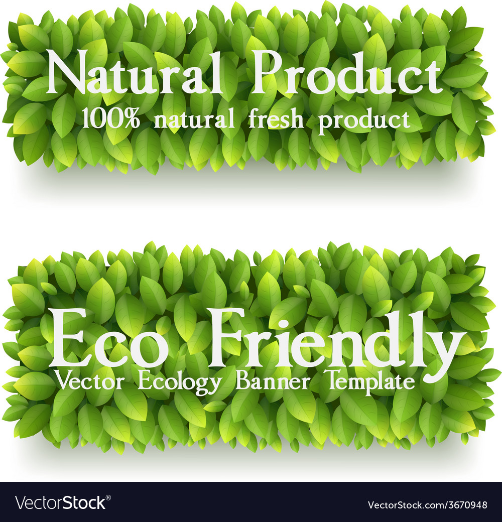 Banner with green leaves vector | Price: 1 Credit (USD $1)