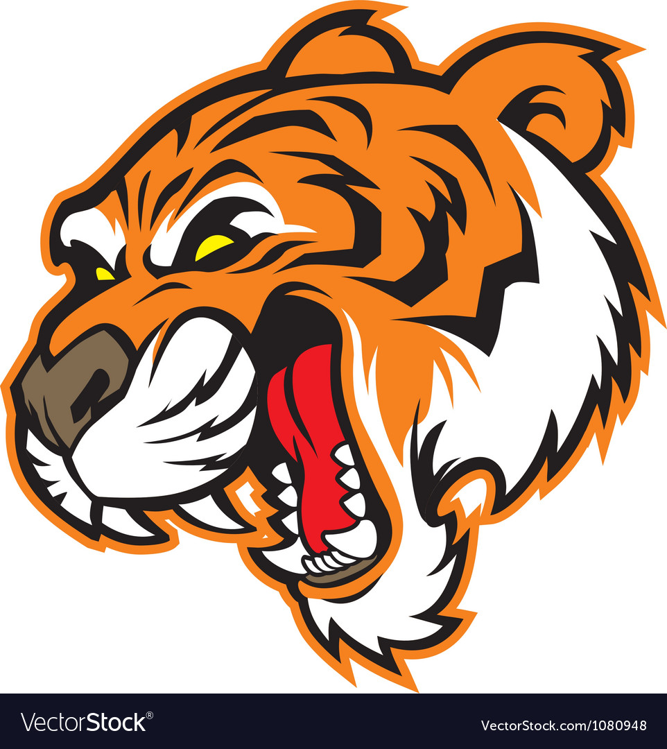 Tiger head mascot vector | Price: 3 Credit (USD $3)