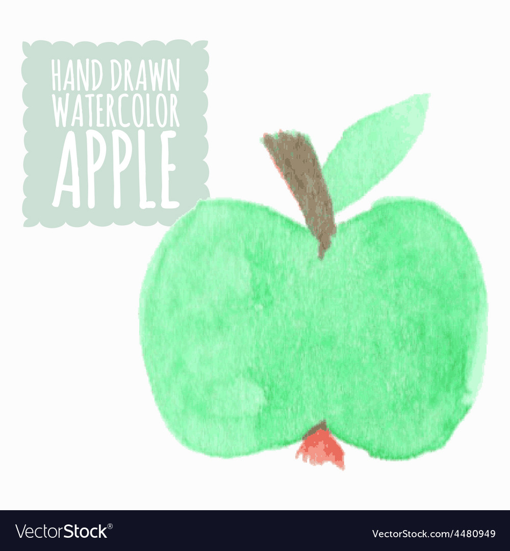 Watercolor or aquarelle apple vector | Price: 1 Credit (USD $1)