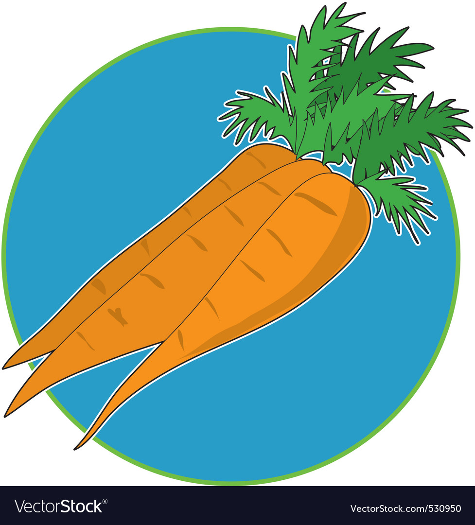Carrot graphic vector