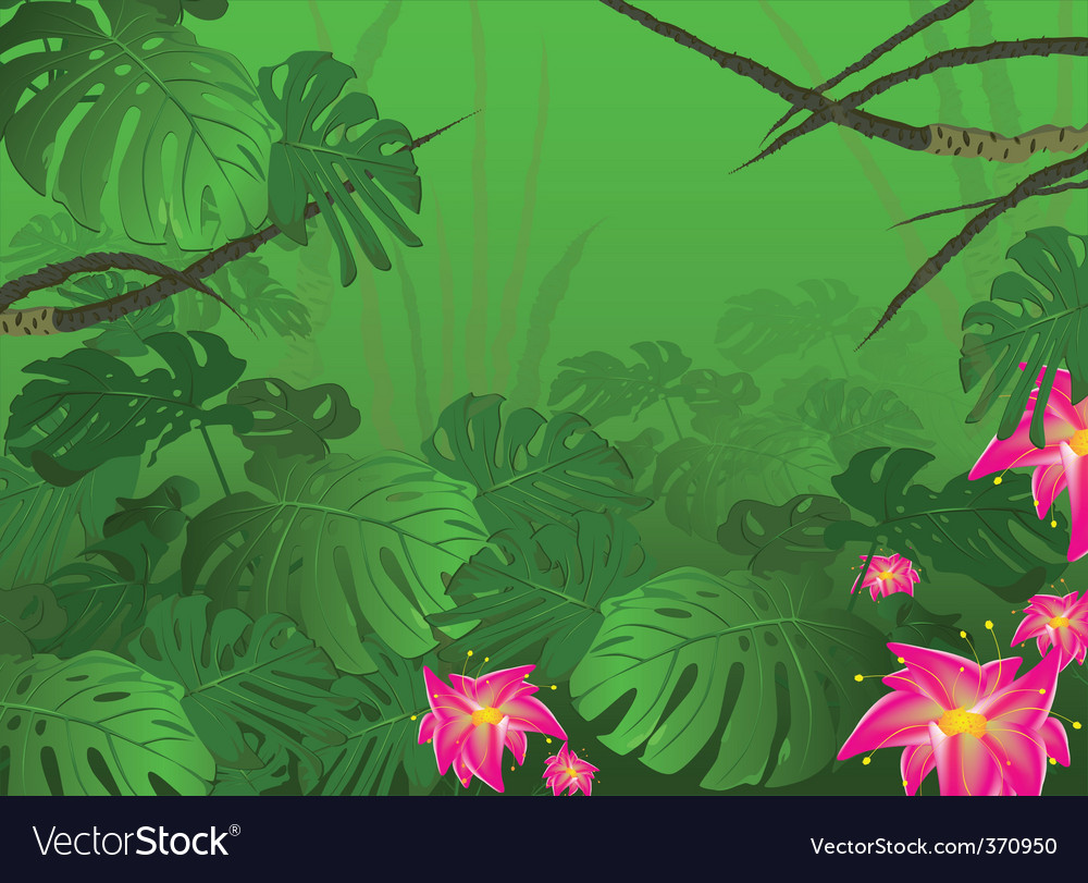 Tropical jungle bush nature vector | Price: 1 Credit (USD $1)