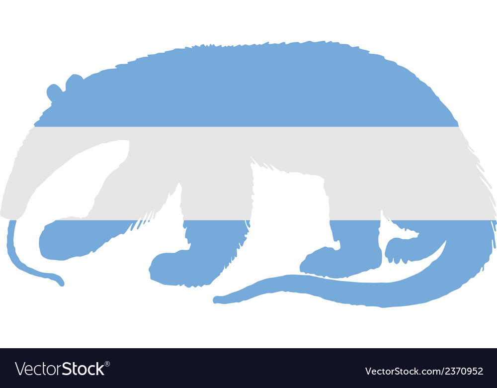 Anteater argentina vector | Price: 1 Credit (USD $1)