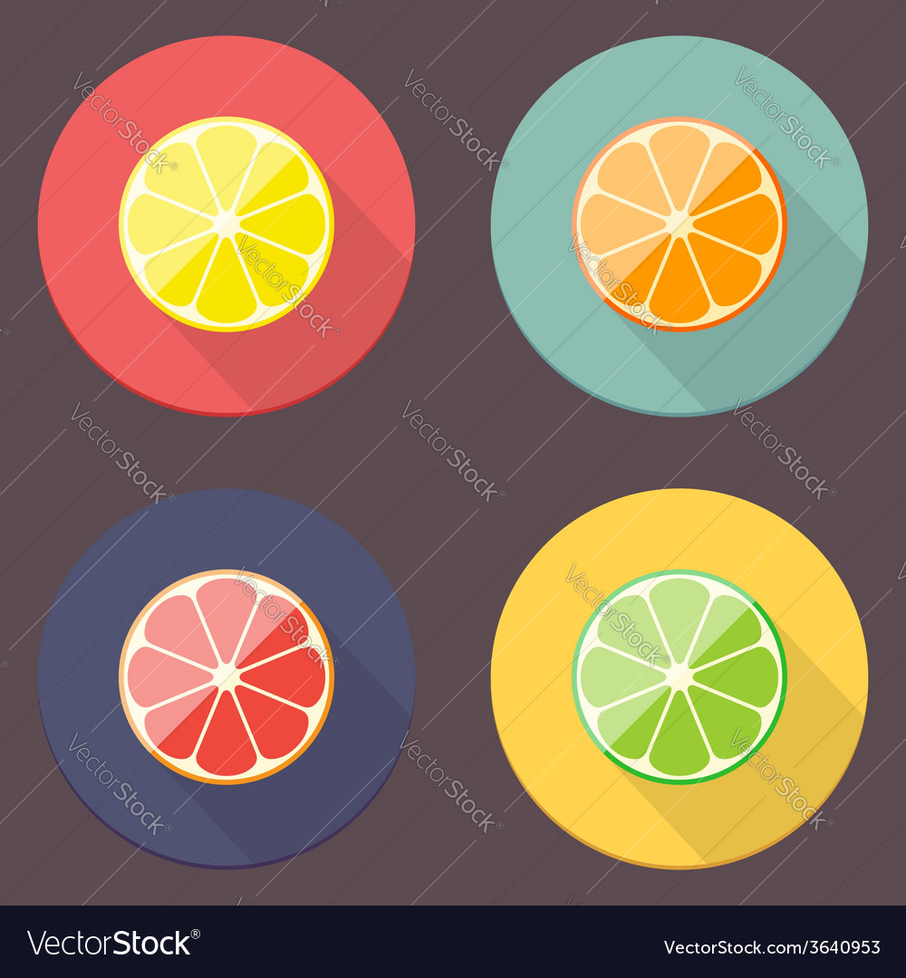 Citrus icon collection vector | Price: 1 Credit (USD $1)