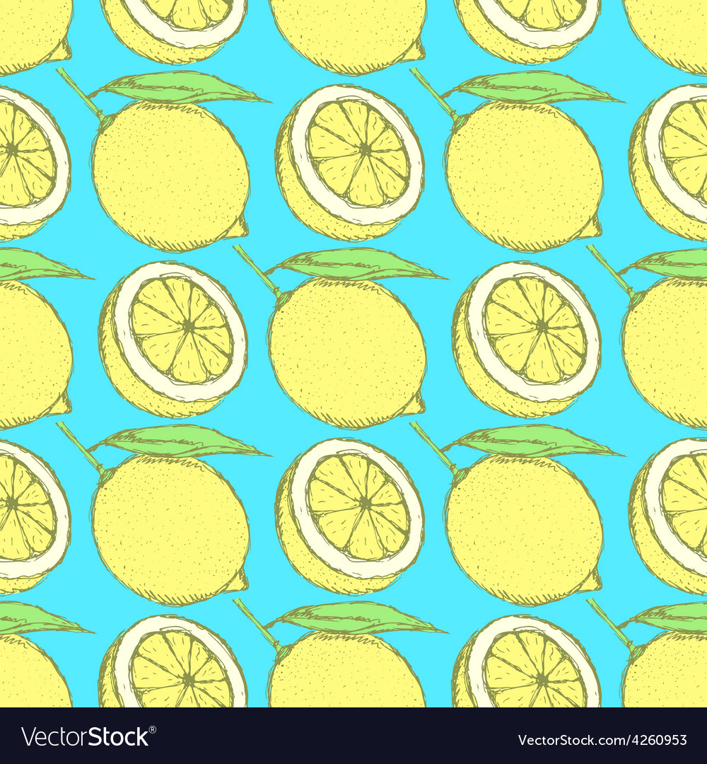 Sketch juicy lemon in vintage style vector | Price: 1 Credit (USD $1)