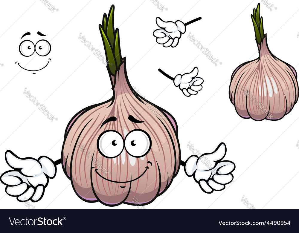 Bulb of sprouted cartoon garlic vegetable vector   Price: 1 Credit (USD $1)