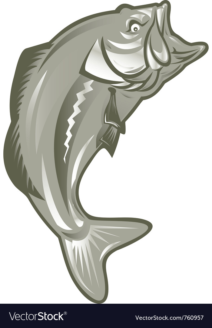Largemouth bass vector | Price: 1 Credit (USD $1)