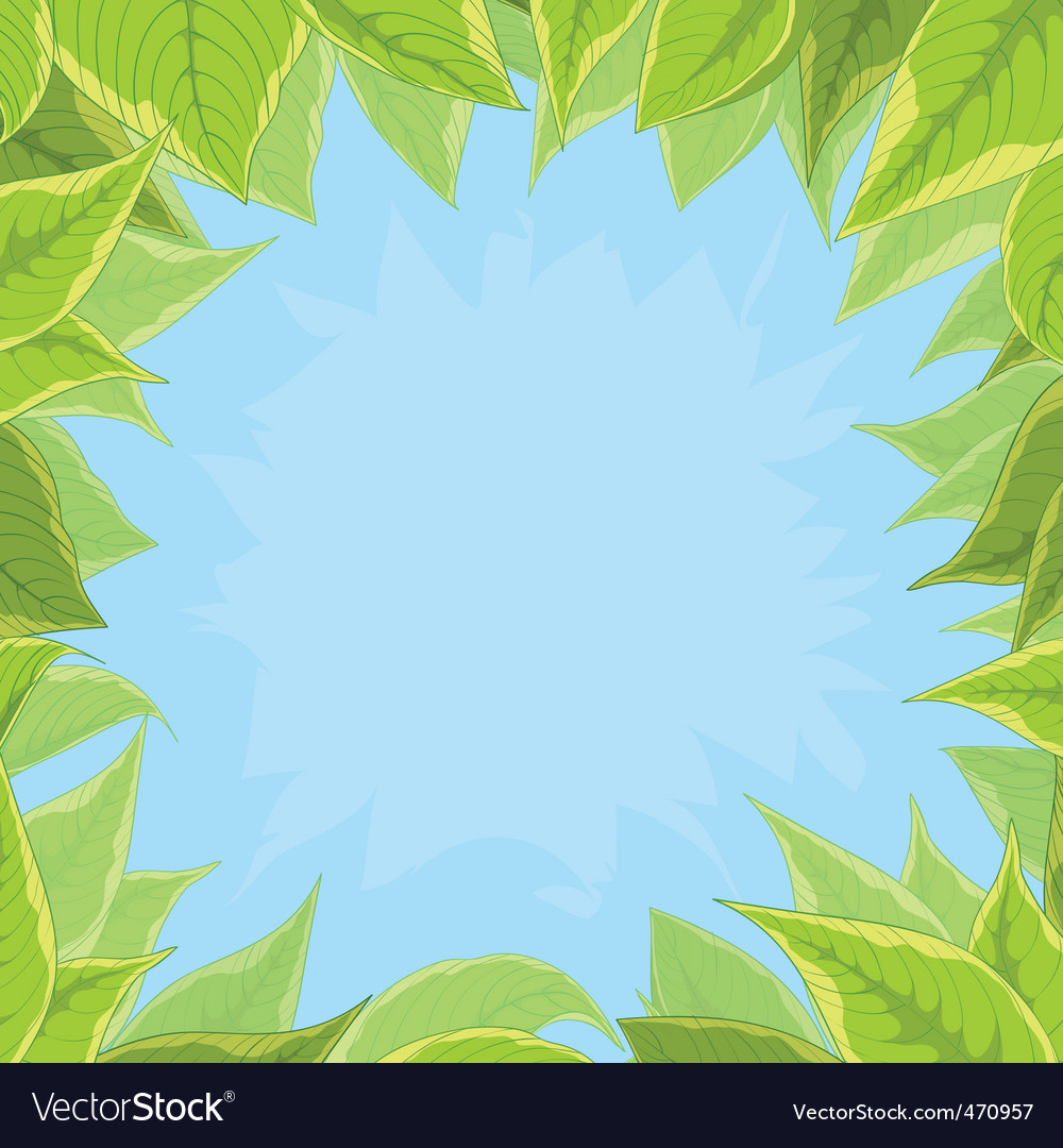 Sky and green leaves vector   Price: 1 Credit (USD $1)