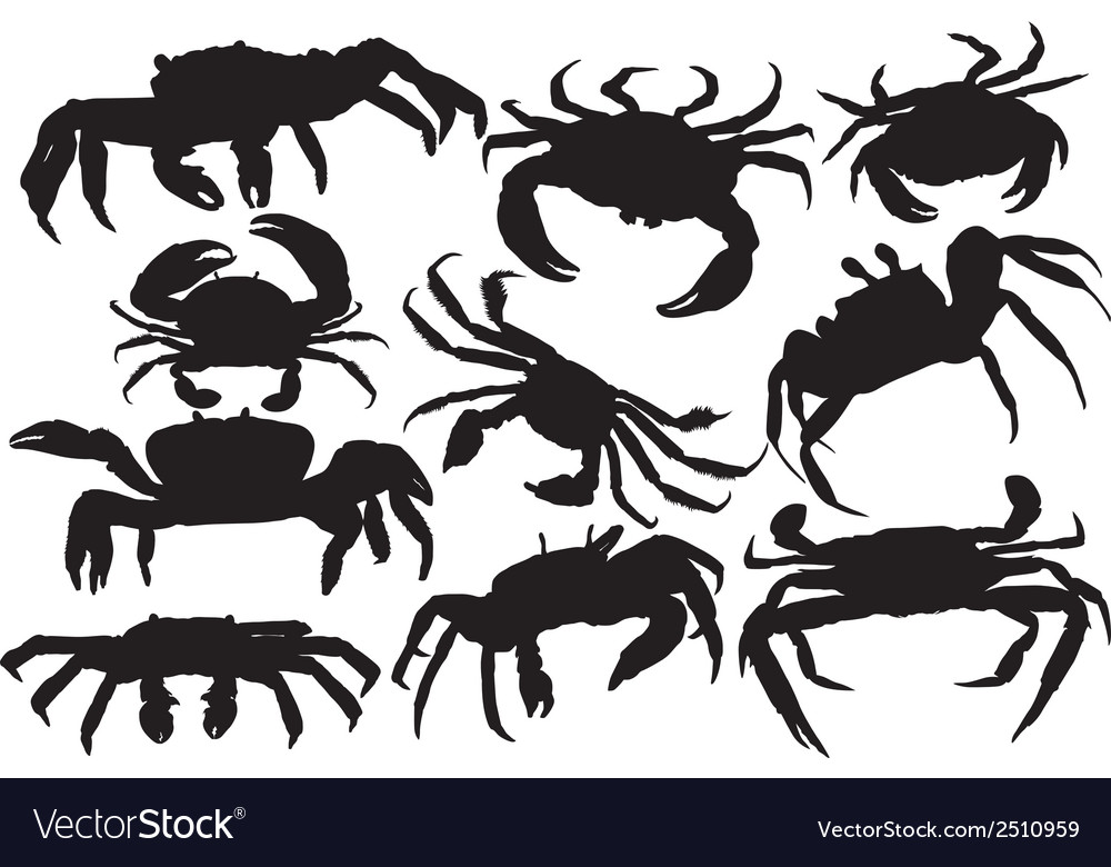 Crab silhouette vector | Price: 1 Credit (USD $1)