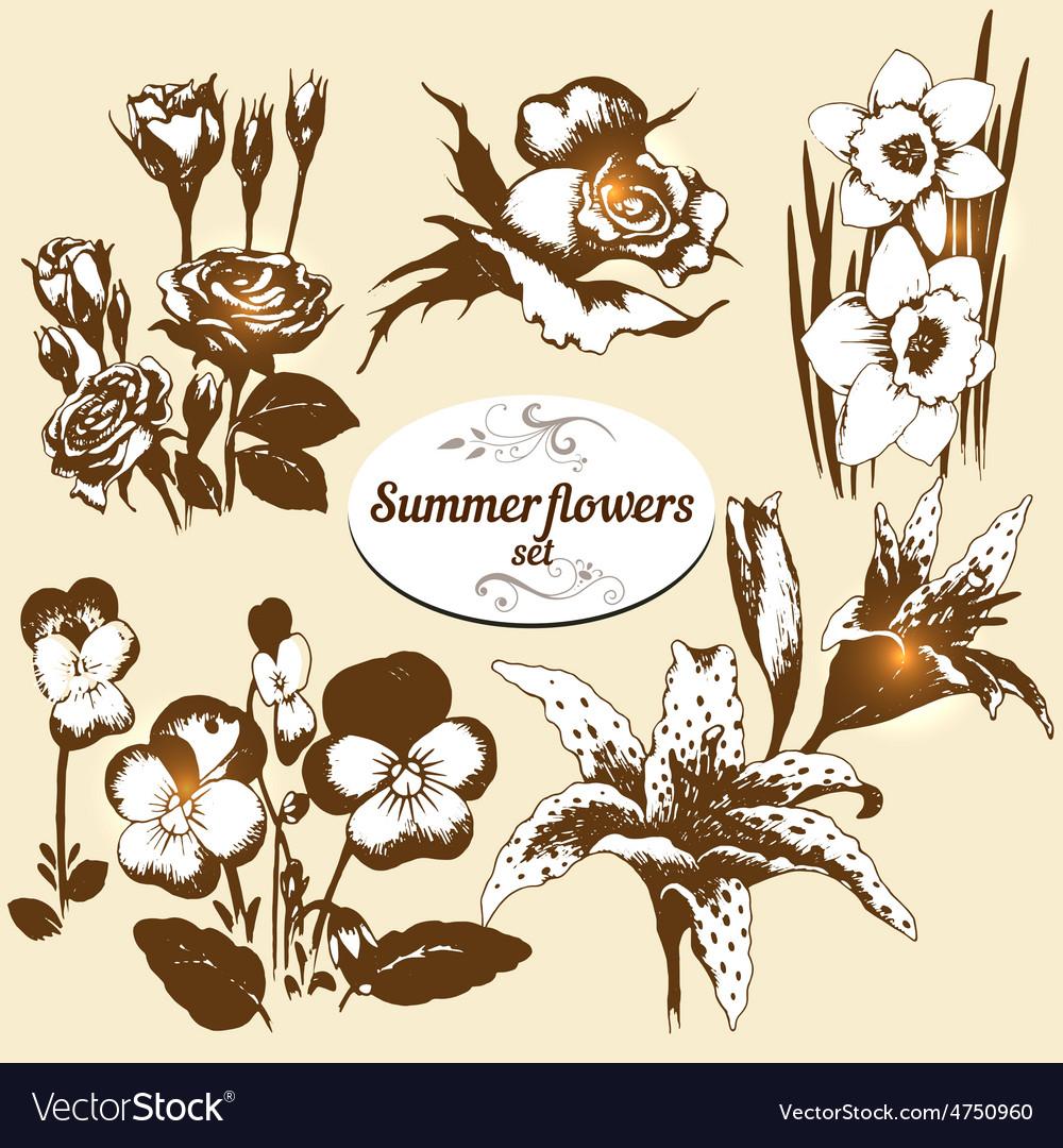 Summer flowers set vector | Price: 1 Credit (USD $1)