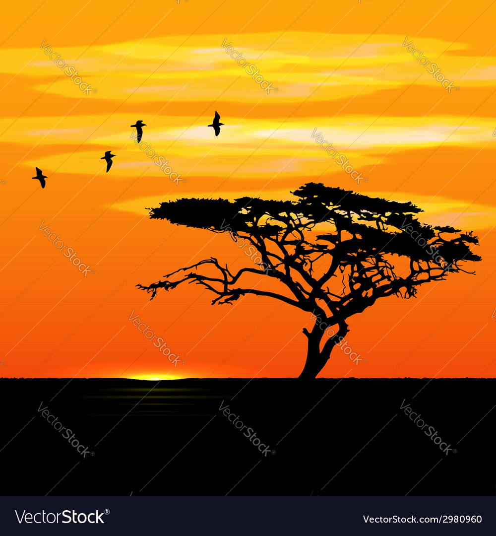 Sunset tree and birds silhouettes vector | Price: 1 Credit (USD $1)