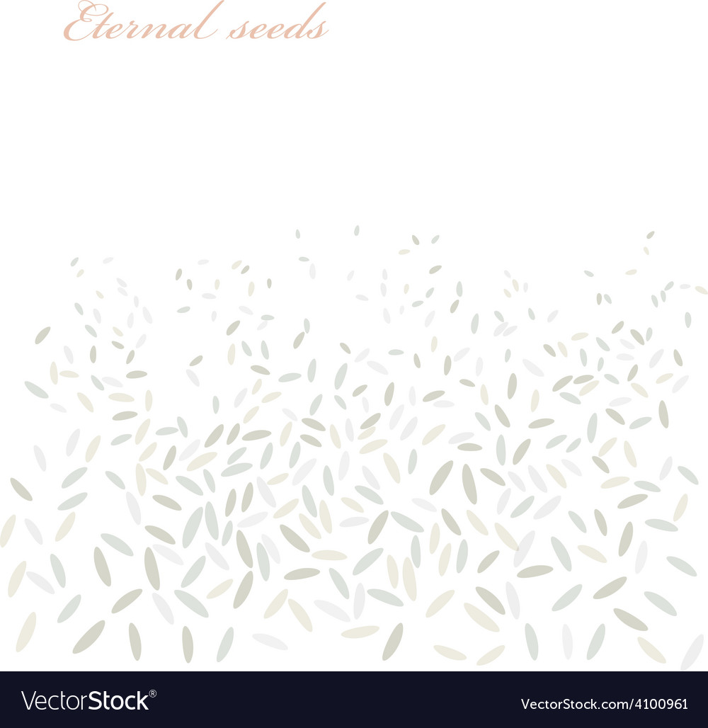 Rice background vector | Price: 1 Credit (USD $1)