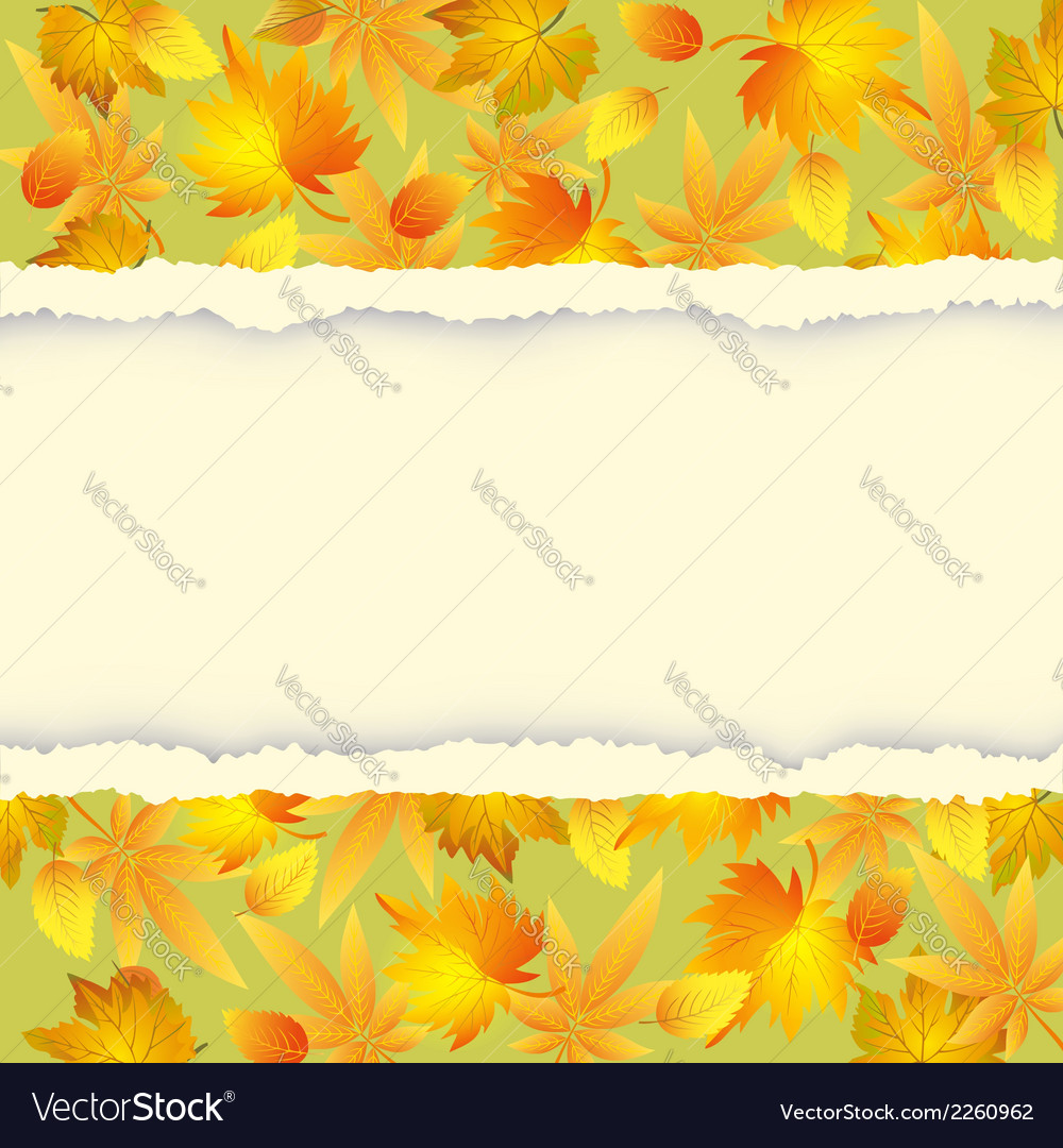 Autumn background with leaf pattern vector | Price: 1 Credit (USD $1)