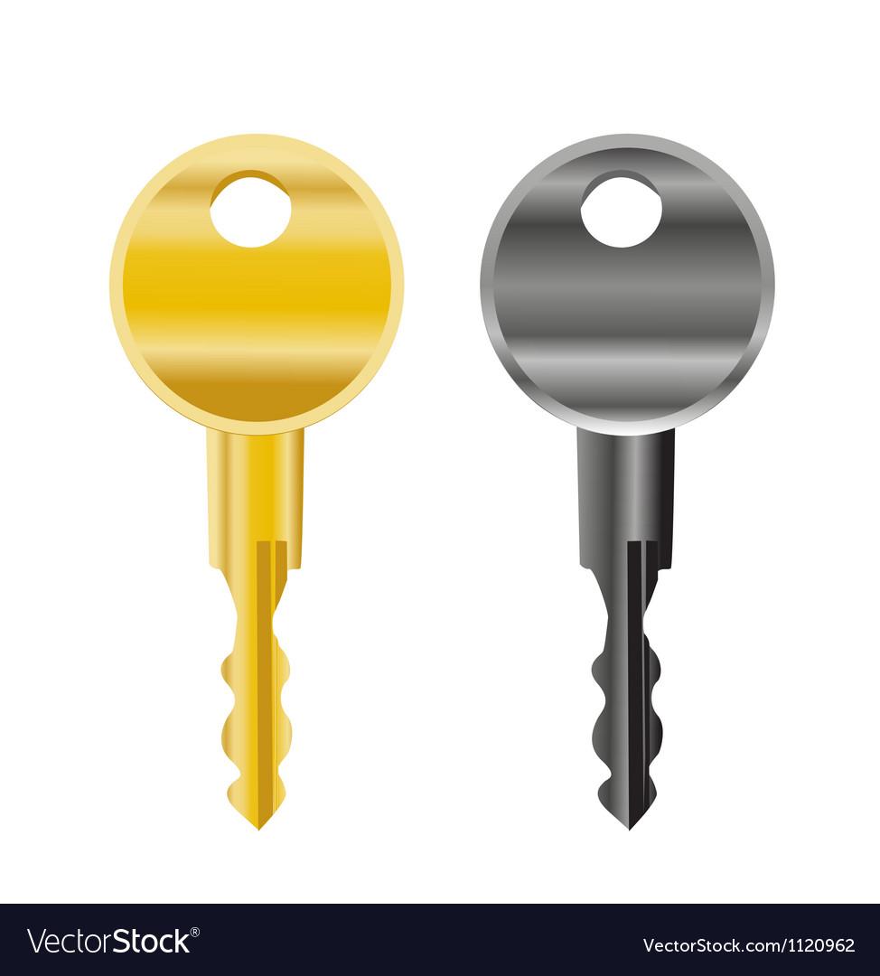 Cartoon keys vector