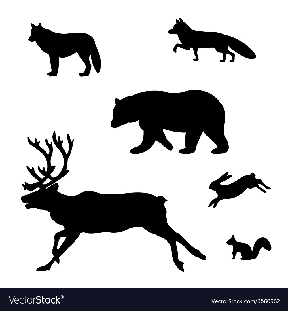 Set of silhouettes of wild animals vector | Price: 1 Credit (USD $1)