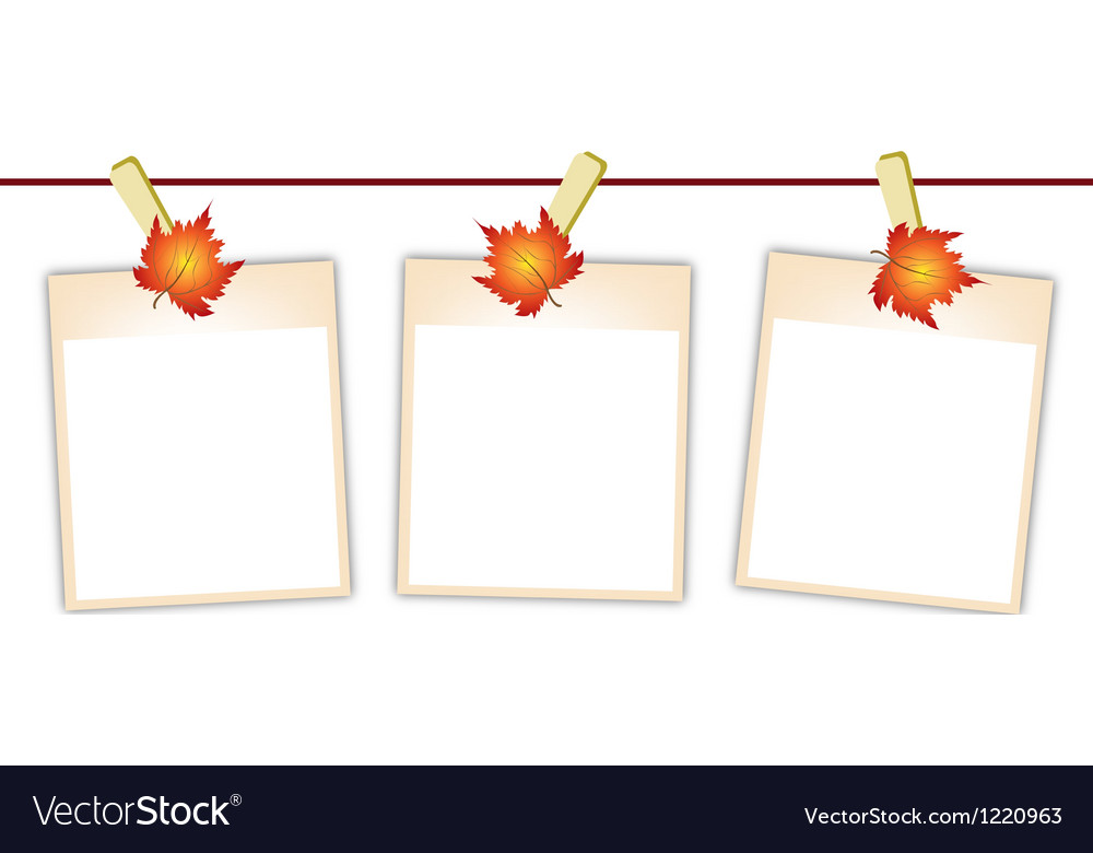 Blank photos with maple leaves on clothesline vector | Price: 1 Credit (USD $1)