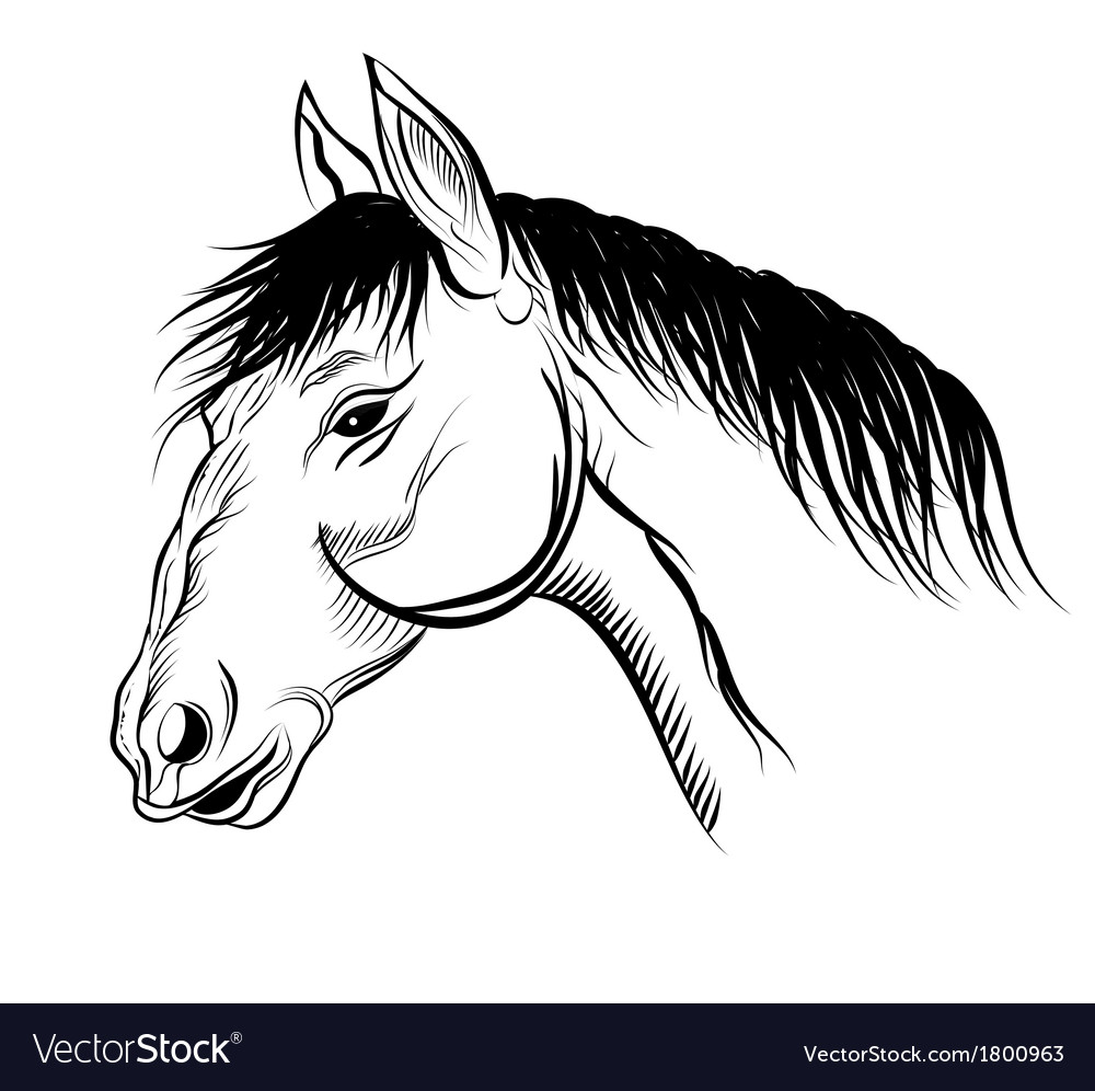 Mare vector | Price: 1 Credit (USD $1)