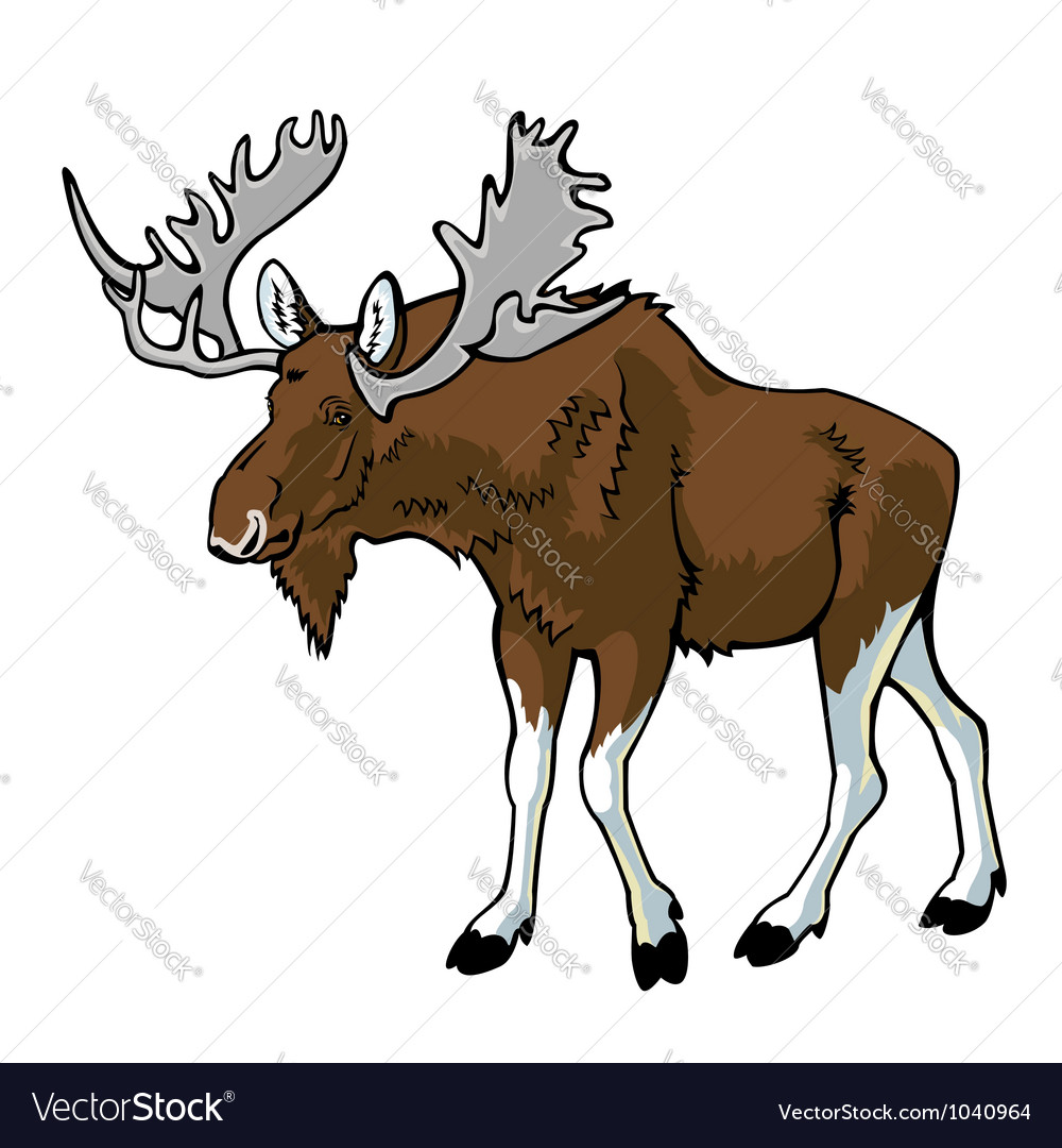 Moose vector | Price: 1 Credit (USD $1)