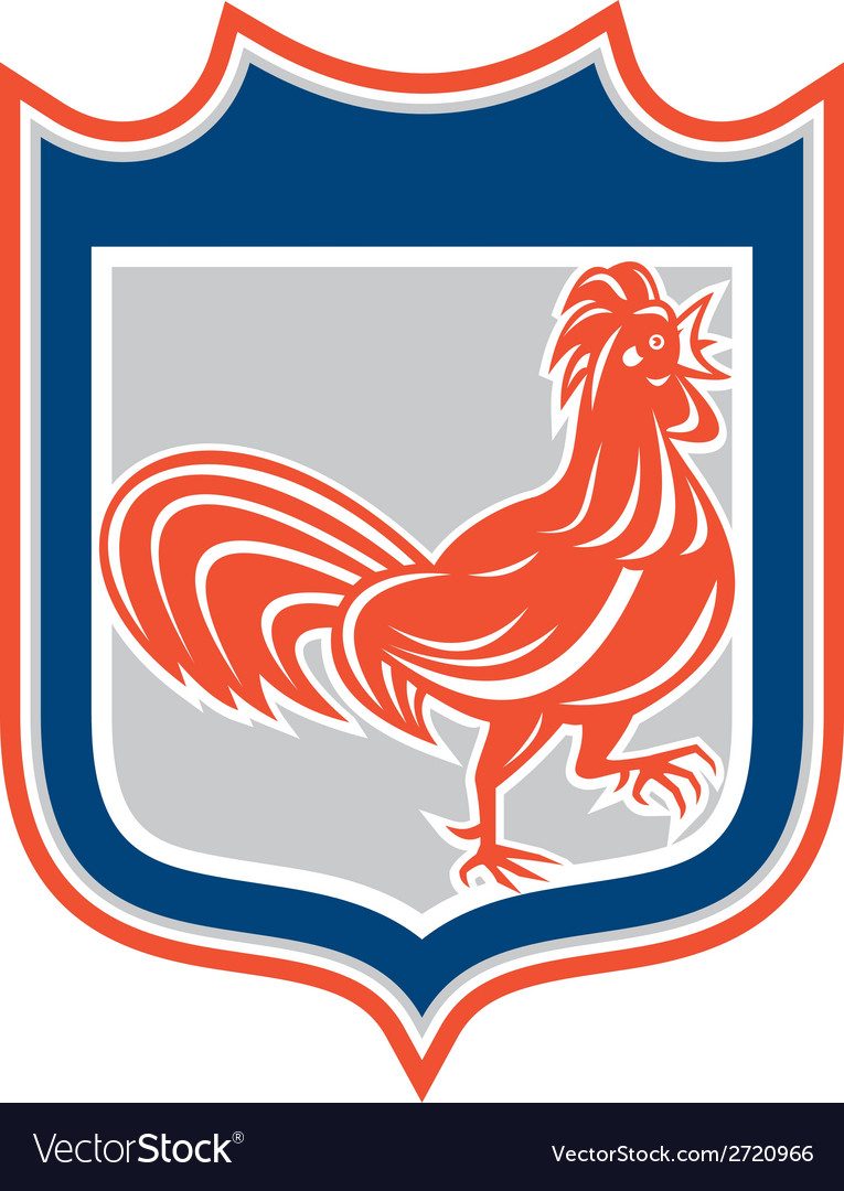 Chicken rooster leg up walking shield retro vector | Price: 1 Credit (USD $1)