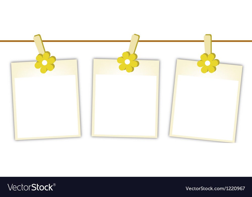 Blank photos with yellow flowers on clothesline vector | Price: 1 Credit (USD $1)