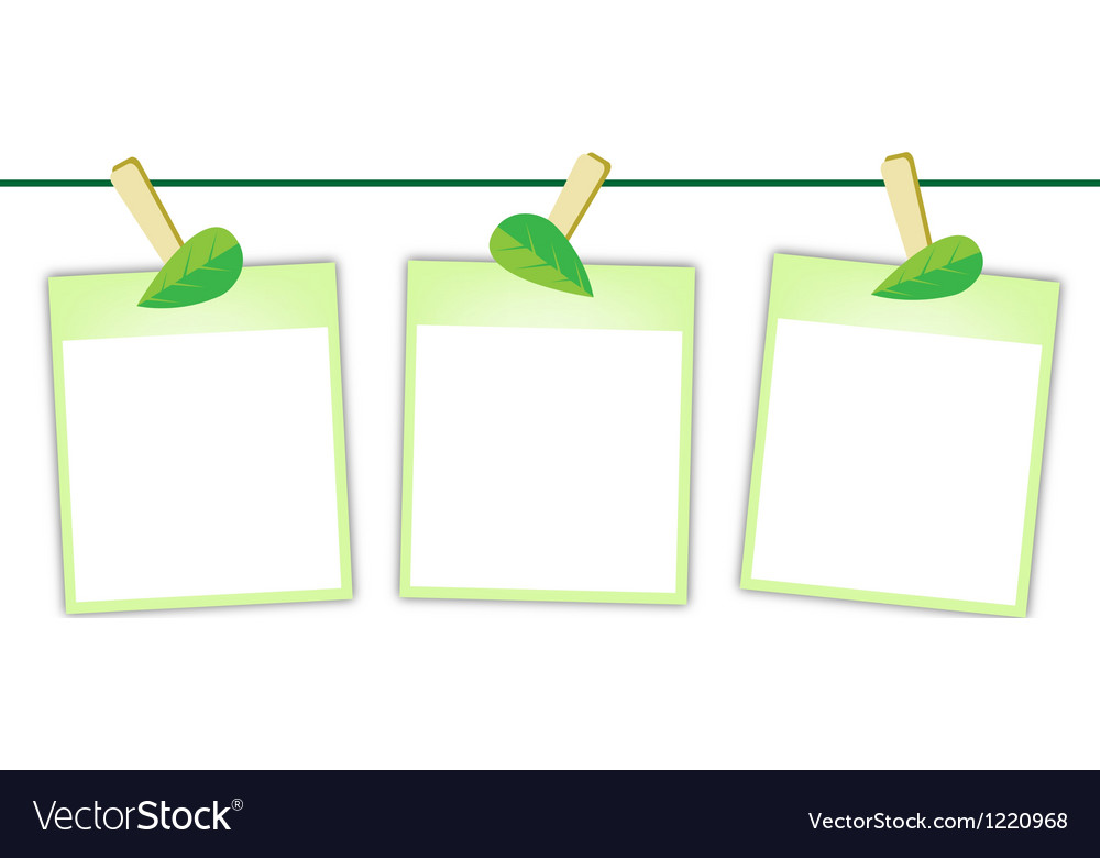 Blank photos with green leaves on clothesline vector | Price: 1 Credit (USD $1)