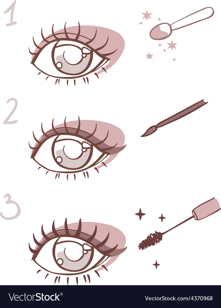Sequence of stages eye makeup vector | Price: 1 Credit (USD $1)