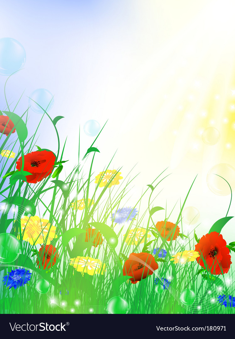 Flower meadow vector | Price: 1 Credit (USD $1)