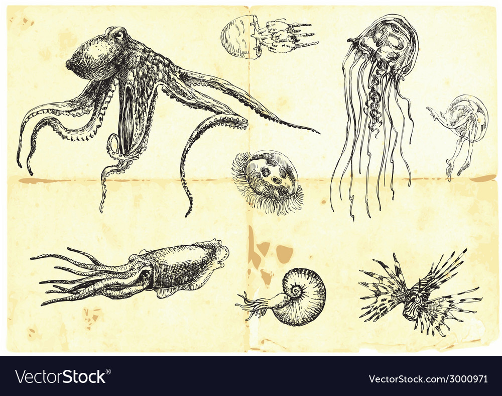 Sea monsters vector   Price: 1 Credit (USD $1)