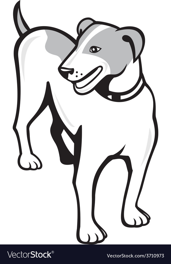 Jack russell terrier standing cartoon vector | Price: 1 Credit (USD $1)