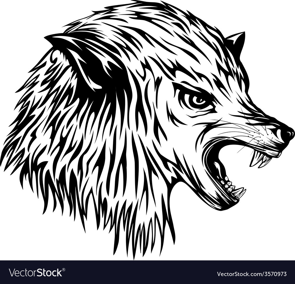 Wolf growls vector | Price: 1 Credit (USD $1)